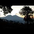 Guatemala Amate