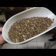 Zöld  (nyers kávé) 500g