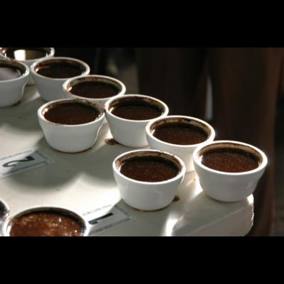 Kávékóstolás